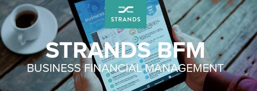 Banner_Strands_BFM
